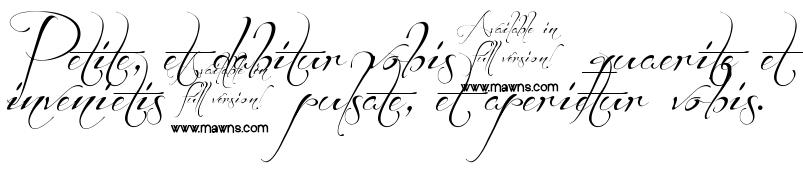 Эскизы на латыни для тату с переводом для девушек